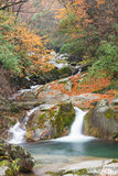 Autumn,forest and stream. Guang wu shan,sichuan,china Royalty Free Stock Photography