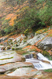 Autumn,forest and stream. Guang wu shan,sichuan,china Stock Image