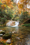 Autumn,forest and stream. Sichuan,china Stock Photo