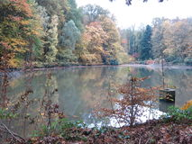 Autumn in the Forest Surrounding a Lake with Ducks Stock Photos