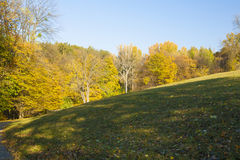 Autumn forest trees behind a hill Stock Images