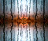 Autumn forest with trees reflecting in water Stock Photos