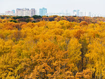 Autumn forest and urban building on horizon Royalty Free Stock Photos