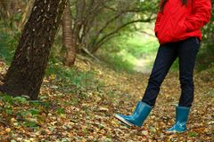 Autumn forest walk. Autumn walk. Woman walking in the forest on a fall day Royalty Free Stock Photos