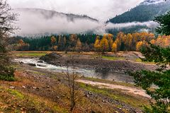 Autumn forest and water stream in moody day Stock Photo