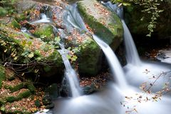 Autumn forest waterfall Stock Image