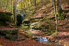 Autumn Forest Waterfall Stock Photography