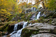 Autumn Forest Waterfall. Autumn Forest Small Creek With Waterfall Royalty Free Stock Photography