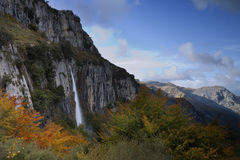 Autumn forest and waterfall Stock Images