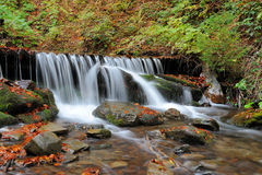 Autumn forest waterfall Royalty Free Stock Image