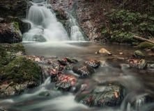 Autumn Forest-waterval dichtbij Terchova, Slowakije Stock Afbeelding