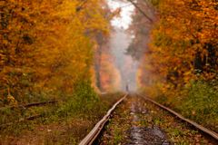 Autumn forest among which goes a strange tram Stock Photo