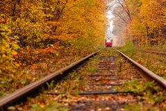 Autumn forest among which goes a strange tram Royalty Free Stock Images