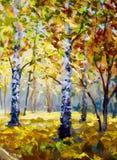 Autumn forest, white birch trees in autumn forest, golden autumn, orange autumn nature. Road in the autumn forest. Green meadow gr vector illustration