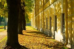 Autumn forest, yellow and green trees near the building royalty free stock photo
