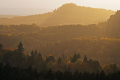 Autumn forests covered by light haze Stock Photos