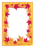 Autumn frame. Yellow-red autumn frame with maple leaves Stock Photos