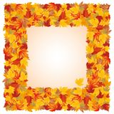 Autumn frame,  Royalty Free Stock Image