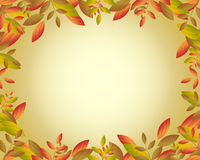 Autumn frame. Illustration of an autumn frame card with ornamental falling leaves.EPS file available Royalty Free Stock Images