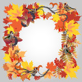 Autumn frame. Decorative autumn frame with leafs and birds Royalty Free Stock Images