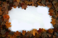 Autumn frame 2. A blank sign ready for message framed by autumn leaves Royalty Free Stock Photo