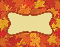 Autumn frame. The leaves on the background are a seamless pattern Stock Photos