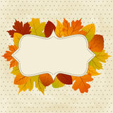 Autumn frame Stock Photos