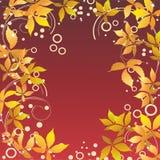 Autumn frame. Stock Photos