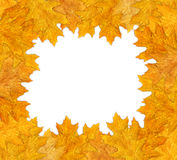 Autumn frame. A beautiful autumn frame with leaves Stock Photo