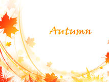 Autumn frame Royalty Free Stock Photos