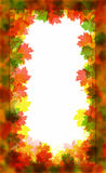 Autumn Frame. Beautiful autumn frame consisting of a maple leaf Royalty Free Stock Images