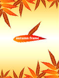Autumn Frame. Simple and brilliant background of autumn leaves Royalty Free Stock Photos
