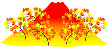 Autumn Frame. Beautiful fall foliage frame illustration of colorful Stock Image
