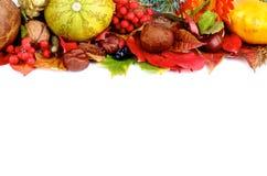 Autumn Frame Foto de archivo libre de regalías