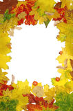Autumn frame Royalty Free Stock Image