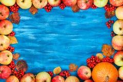 Autumn frame of apples, pumpkin, rowan on  painted blue wooden b Stock Image