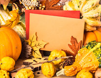 Autumn frame around greeting cards, text space Royalty Free Stock Photography