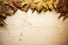 Autumn frame. Autumnal frame made ​​of fallen leaves and a wooden board Stock Photography