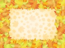 Autumn frame background Stock Photography