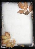 Autumn frame  background Royalty Free Stock Photo