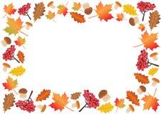 Autumn frame, background Royalty Free Stock Image