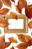 Autumn frame background Stock Images