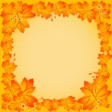 Autumn frame with background of maple leaves Stock Image