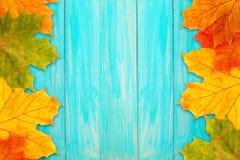 Autumn frame on a blue board Royalty Free Stock Photos