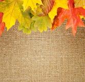 Autumn frame on canvas Stock Photo