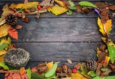 Autumn frame of colored leaves  on a natural wood background Stock Photos