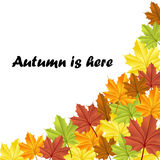 Autumn frame with colorful leaves Stock Photography