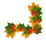 Autumn frame of colorful leaves isolated on white background Royalty Free Stock Images