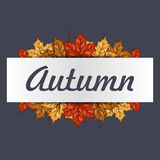 Autumn frame with colorful leaves with space for your text. Banner with maple leaf for print or web. Stock Images