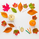 Autumn frame composition of colorful leaves and pumpkins. Royalty Free Stock Photos